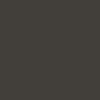 Śnieżka Colorex 100ml - czarny