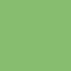 Śnieżka Colorex 100ml - groszkowy