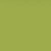 Śnieżka Colorex 100ml - oliwkowy