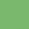 Śnieżka Colorex 100ml - zielony-wiosenny
